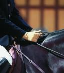 Men full-leather Saumur gloves, beige