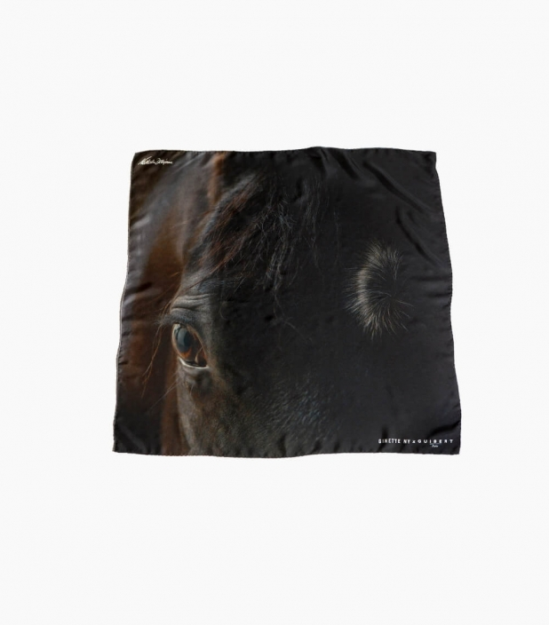 Guibert Paris - Bay horse head silk scarf