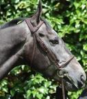 Guibert Paris - Bridon Atherstone tout cuir