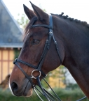 Guibert Paris - Raised and calfskin padded snaffle bridle
