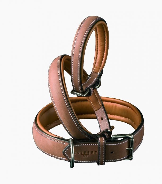 Atherstone dog collar, gold