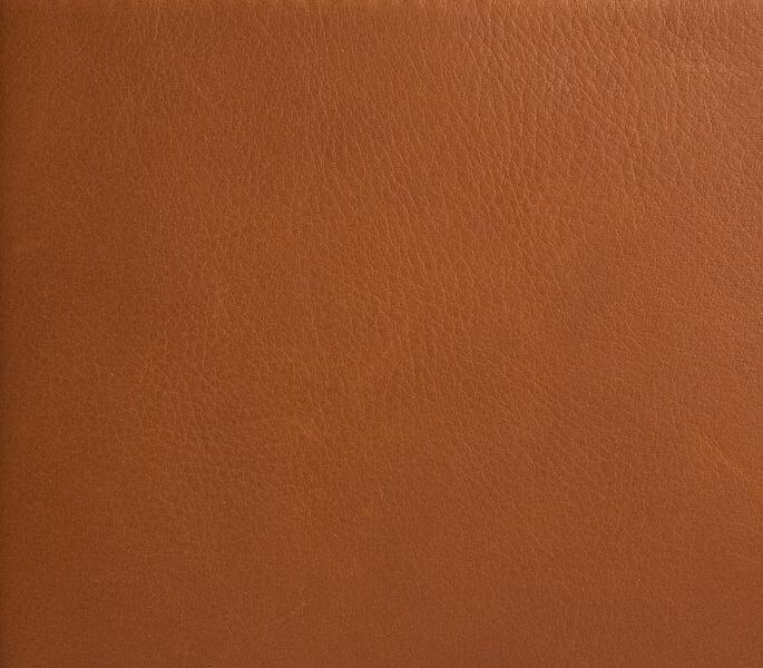 Saddle Calf leather, gold